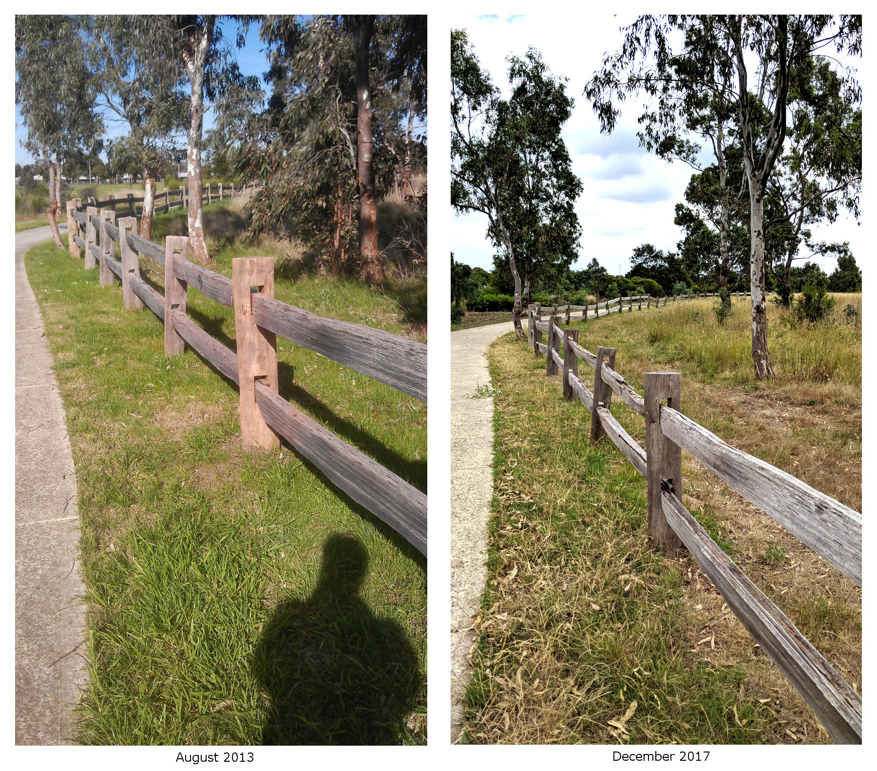 Findon-Road-Timber-Fence-Time-Lapse.jpg