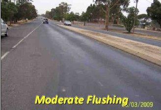 Flushing1.jpg