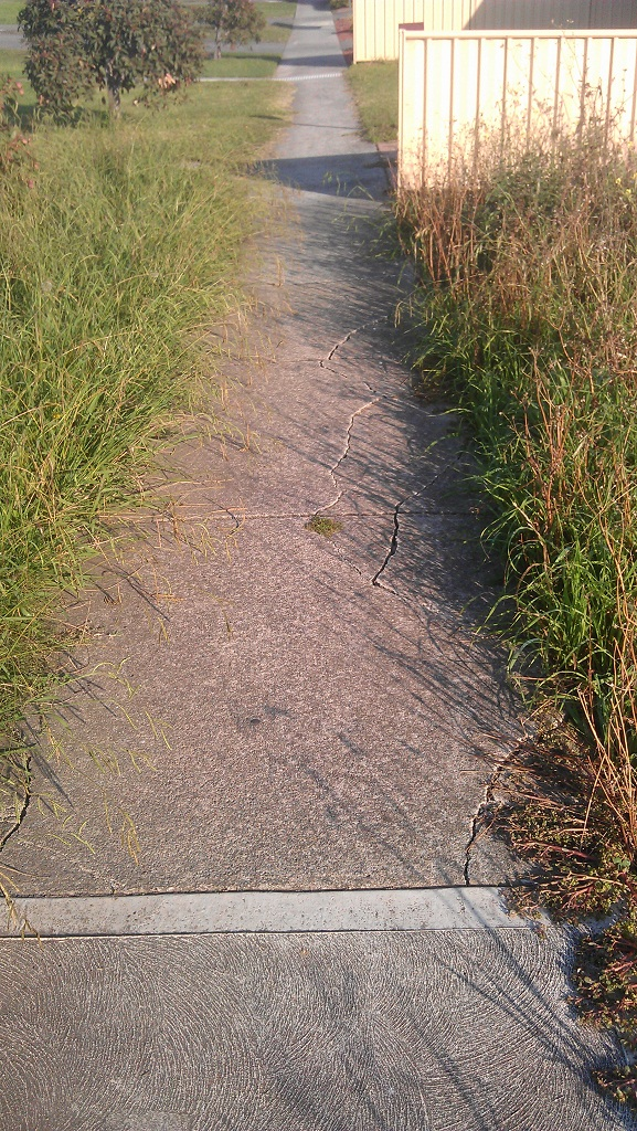 Overgrown-Cracked-Path1.jpg
