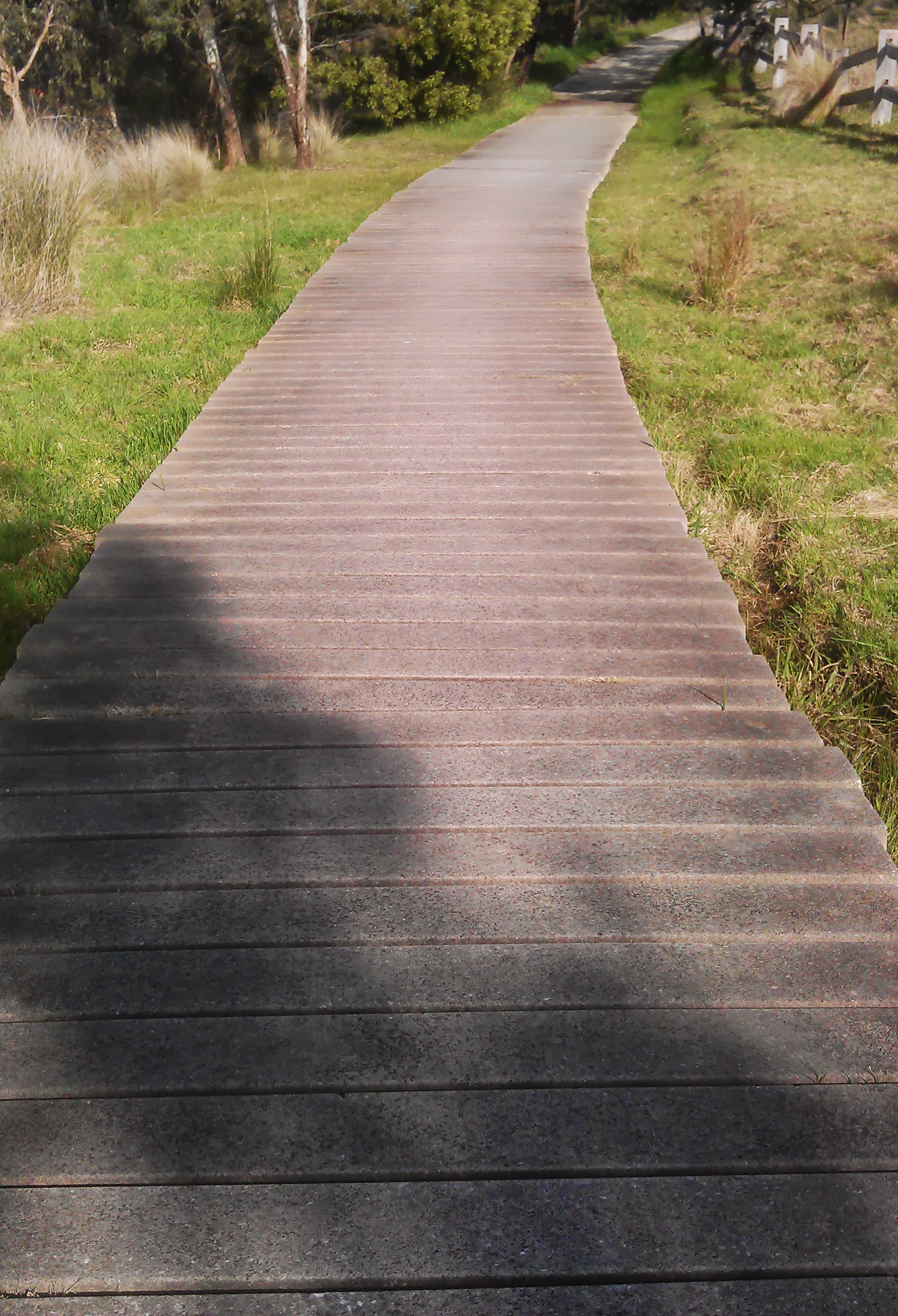 Concrete-Boardwalk1.jpg